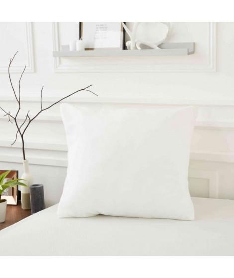 SWEETNIGHT Protege oreiller ALLERGOSTOP 50x70 cm, housse intégrale, anti-acariens et anti-punaises de lit