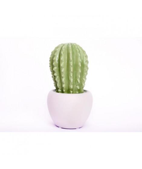 Cactus céramique 28 cm - Vert clair