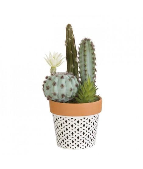 Composition de Cactus fleuri et plantes grasses - En pot ethnique noir