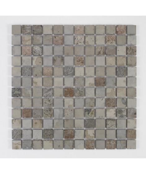 U-TILE Mosaique en pierre naturelle 30 x 30 cm - carreau 2,5 x 2,5 cm - mixte beige