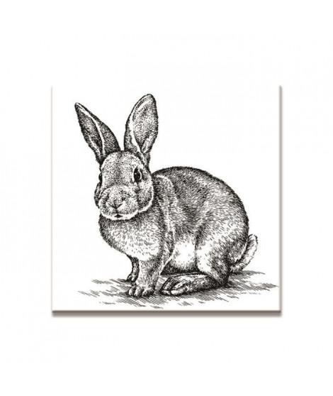 LAPIN Tableau imprimé 50x50cm - Lapin noir & blanc