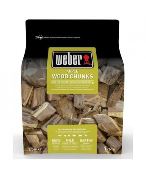 WEBER Gros morceaux de bois de fumage Pomme