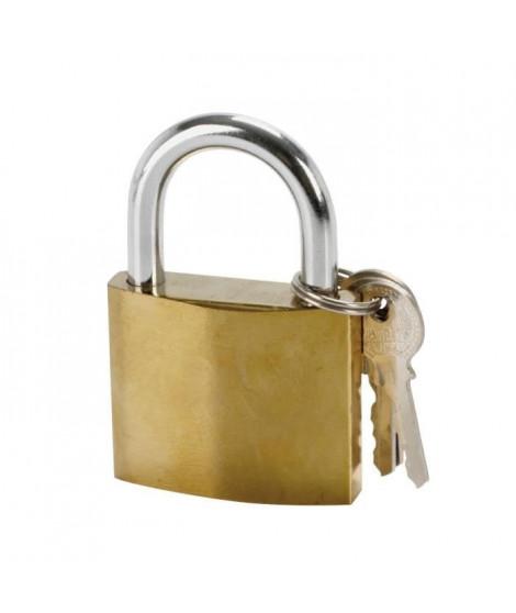 COGEX Cadenas en acier 50mm + 2 clés