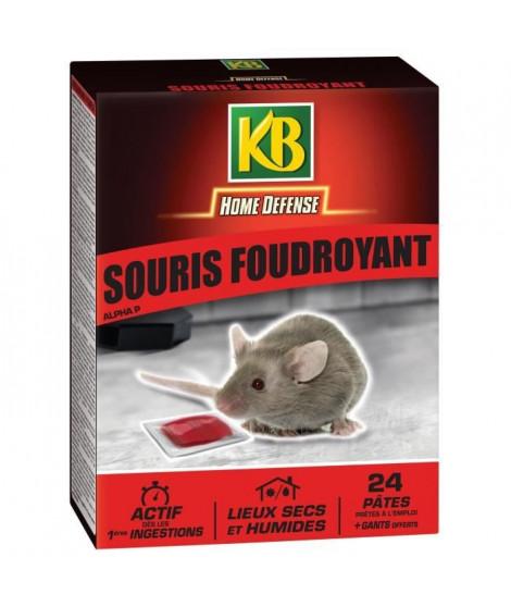 KB Sachets de pâtes prets a l'emploi souris foudroyant - 240 g