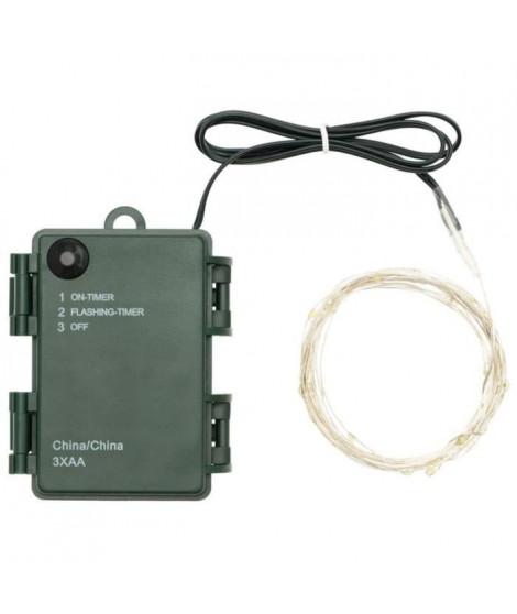 LOTTI Guirlande lumineuse 30 micro-LED - Lumiere fixe et flashing sélectionnable - 3 m