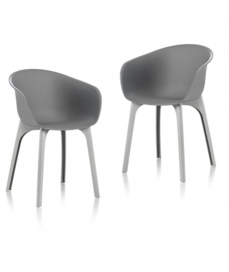 IDEA lot de 2 Chaises de jardin Diva Gris
