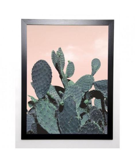 BRAUN STUDIO Affiche encadrée Cactus Raquettes 57x77 cm
