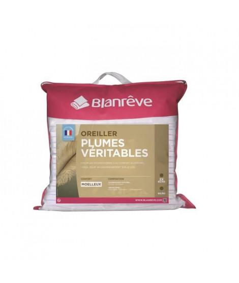 BLANREVE Lot de 2 oreillers Plumes - 60x60 cm