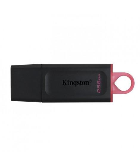 KINGSTON Clé USB DataTraveler Exodia 256GB - Avec capuchon de protection et anneaux pour porte clés