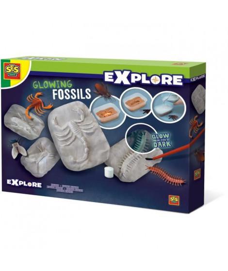 SES CREATIVE Fossiles Brillants