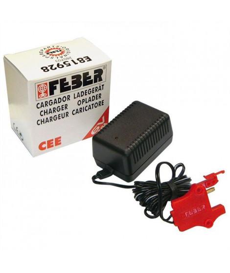 Chargeur de Batterie pour Véhicules Electriques 12V - FEBER