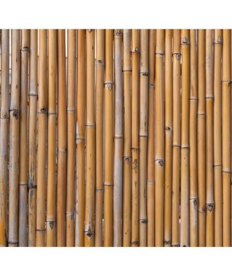 NATURE Ecran en bambou 100x180cm