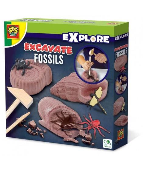 SES CREATIVE Découvre des Fossiles