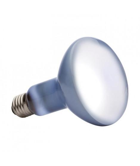 DAYLIGHT BASKING SPOT ampoule 150 W