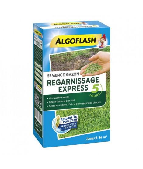 ALGOFLASH Semences gazon regarnissage express - 1 Kg