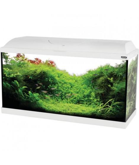 ZOLUX Aquarium ISEO équipé - 57L - L 61 x p 31 x h 42 cm - Blanc