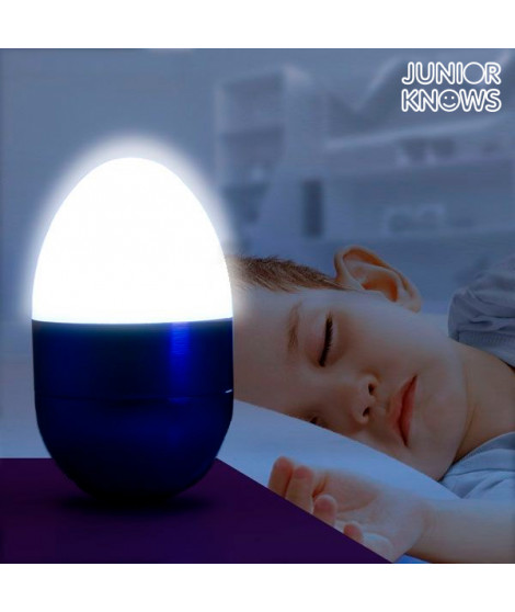 Lampe LED décorative Œuf