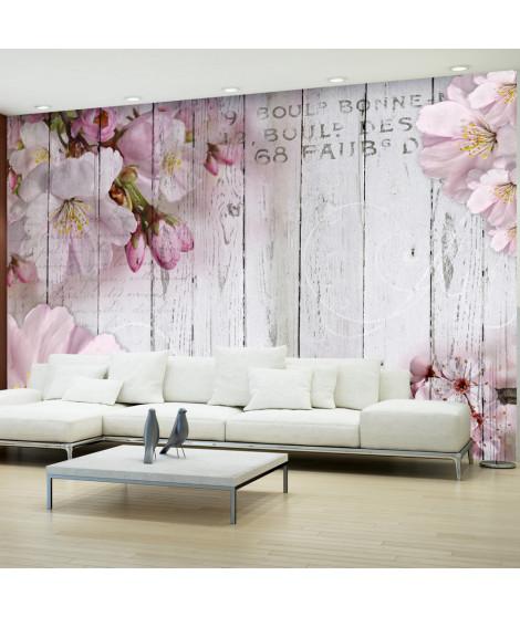 Papier peint - Apple Blossoms