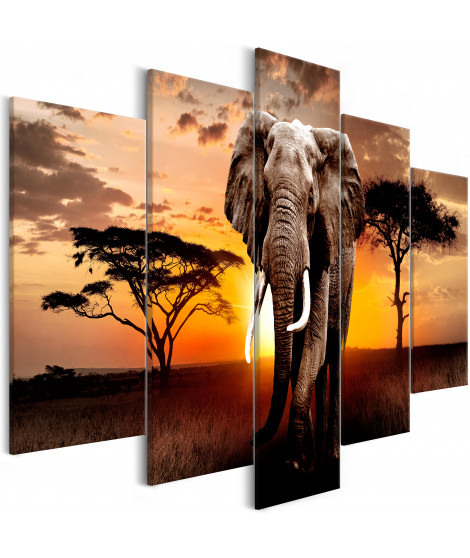 Tableau - Wandering Elephant (5 Parts) Wide