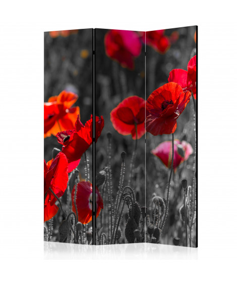 Paravent 3 volets - Red Poppies [Room Dividers]