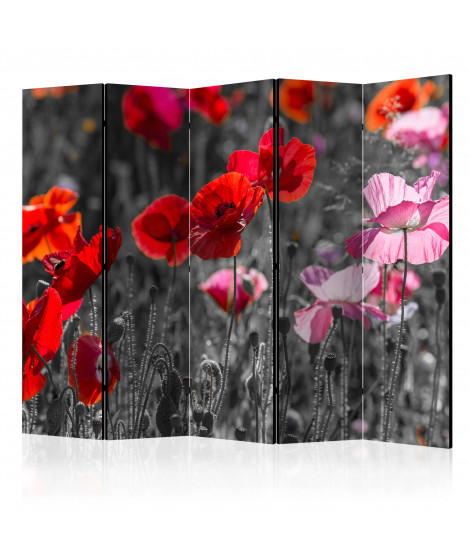 Paravent 5 volets - Red Poppies II [Room Dividers]