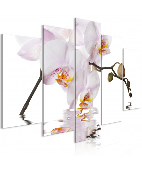 Tableau - Delightful Orchid (5 Parts) Wide