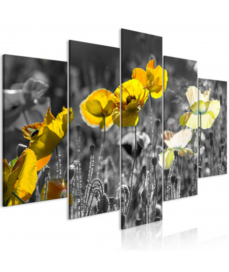 Tableau - Yellow Poppies (5 Parts) Wide
