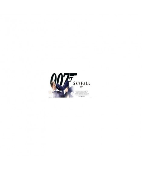 Affiche film SKYFALL - JAMES BOND - BOND IN DUST
