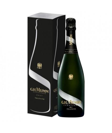 Champagne Mumm Millésimé 2013 avec étui - 75 cl