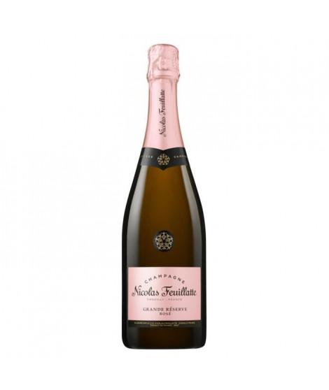 Nicolas Feuillatte Champagne Rosé x1