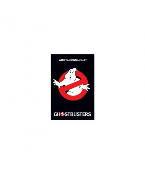Affiche film Ghostbusters
