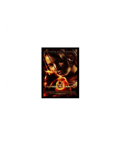 Affiche Film THE HUNGER GAMES