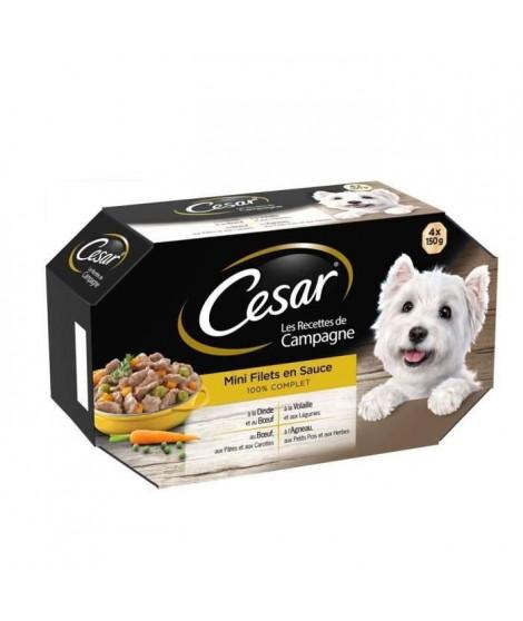 CESAR Barquettes Mini filets en sauce - 4 variétés - Pour chien adulte - 4 x 150 g (x6)