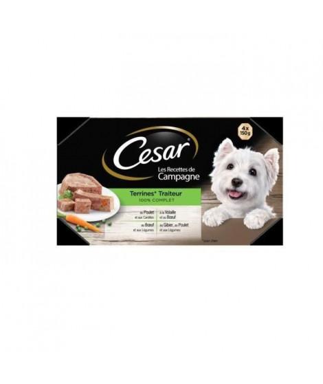 CESAR Barquettes en terrine - 4 variétés - Pour chien adulte - 4 x 150 g (x6)