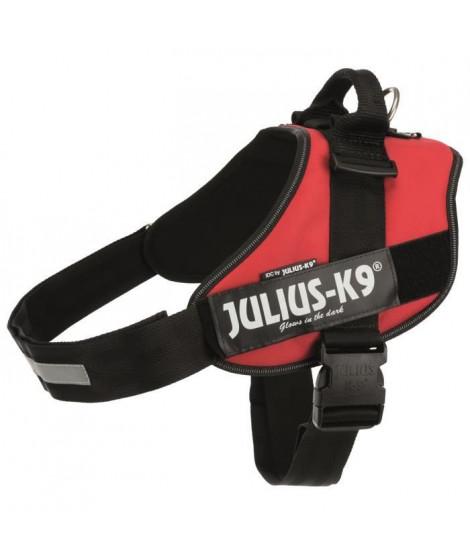 JULIUS K9 Harnais Power IDC 4–XXL : 96–138 cm - 50 mm - Rouge - Pour chien