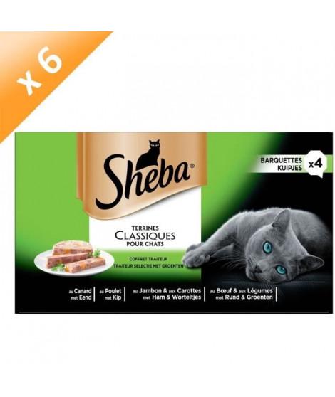 SHEBA Barquettes en terrine - 4 variétés - Pour chat - 4 x 85 g (x6)