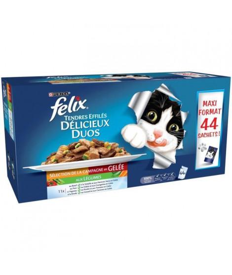 FELIXTendres Effilés en gelée Délicieux Duos - Sélection de la Campagne aux légumes - Pour chat adulte - 44 x 100 g