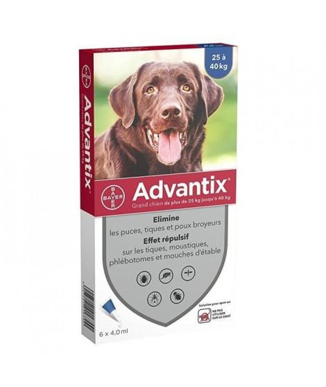 ADVANTIX 6 pipettes antiparasitaires - Pour grand chien de plus de 25kg