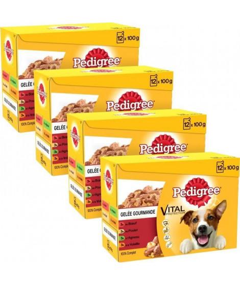 PEDIGREE Sachets fraîcheur en gelée 4 variétés - Pour chien - 12x 100 g (x4)