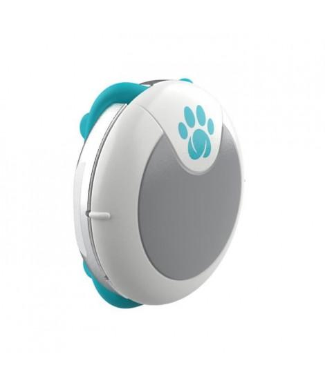 SUREFLAP Traqueur d'activités et de comportement - Blanc et bleu - Pour chien