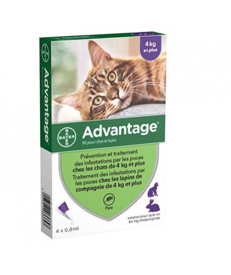 ADVANTAGE 80 - 4 pipettes antiparasitaires - Pour chat et lapin de 4kg et plus
