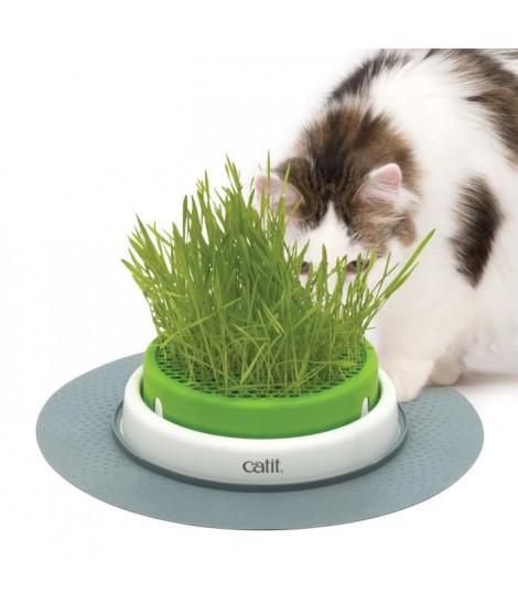 Jardin Herbe Pour Chat Catit Senses 2.0