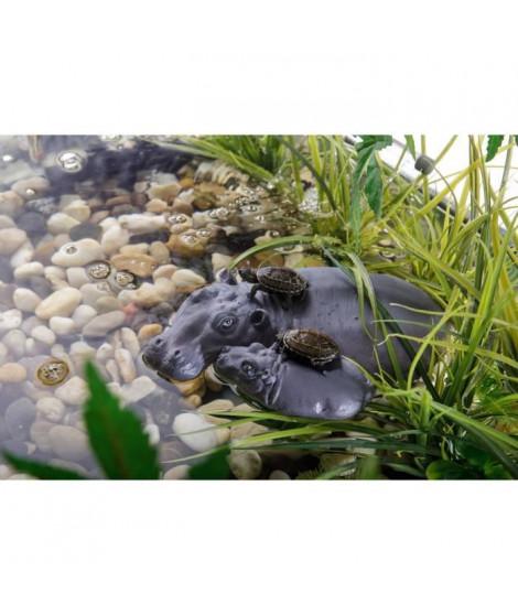 EXO-TERRA Hippo turtle Island - Pour reptile ou amphibien