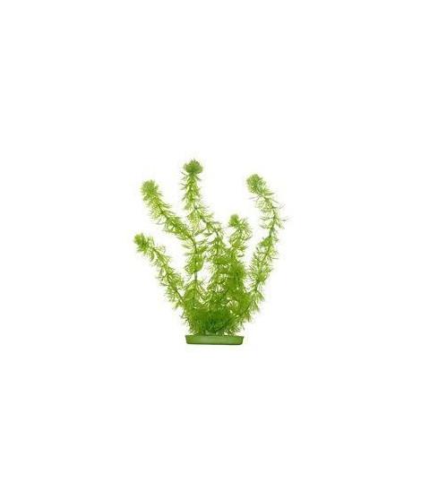 AQUA Plantes artificielles Marina Hornwort 20 cm - Plastiques - Vertes - Pour aquarium