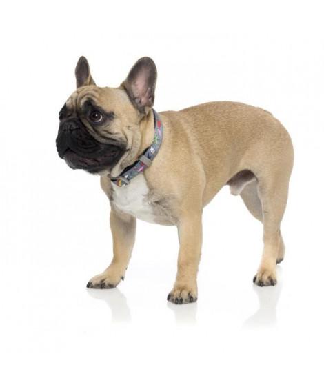 FUZZYARD Laisse néoprene Coachella L - 140 x 2,5cm - Pour chien