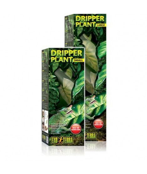 Water Dripper Plant Large - Exo Terra
