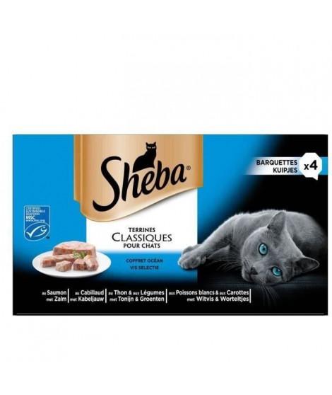 SHEBA Barquettes en terrine - Aux poissons - Pour chat - 4 x 85 g (x6)