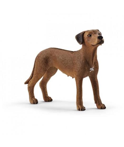 SCHLEICH - Figurine  Chien de Rhodésie a crete dorsale