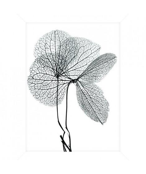 Cadre pour coffre ou étagere Fleur Gris - 18 x 24 cm - Blanc et noir