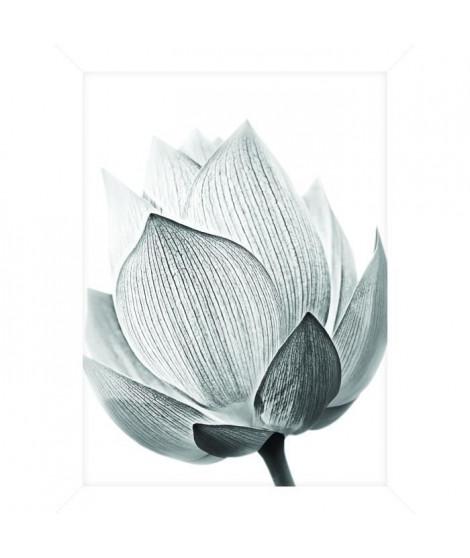 Cadre pour coffre ou étagere Fleur Gris 2 - 18 x 24 cm - Blanc et noir